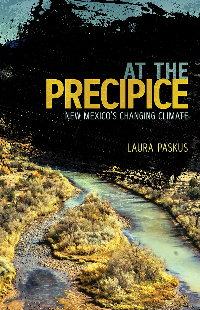 Book cover of At the Precipice by Laura Paskus