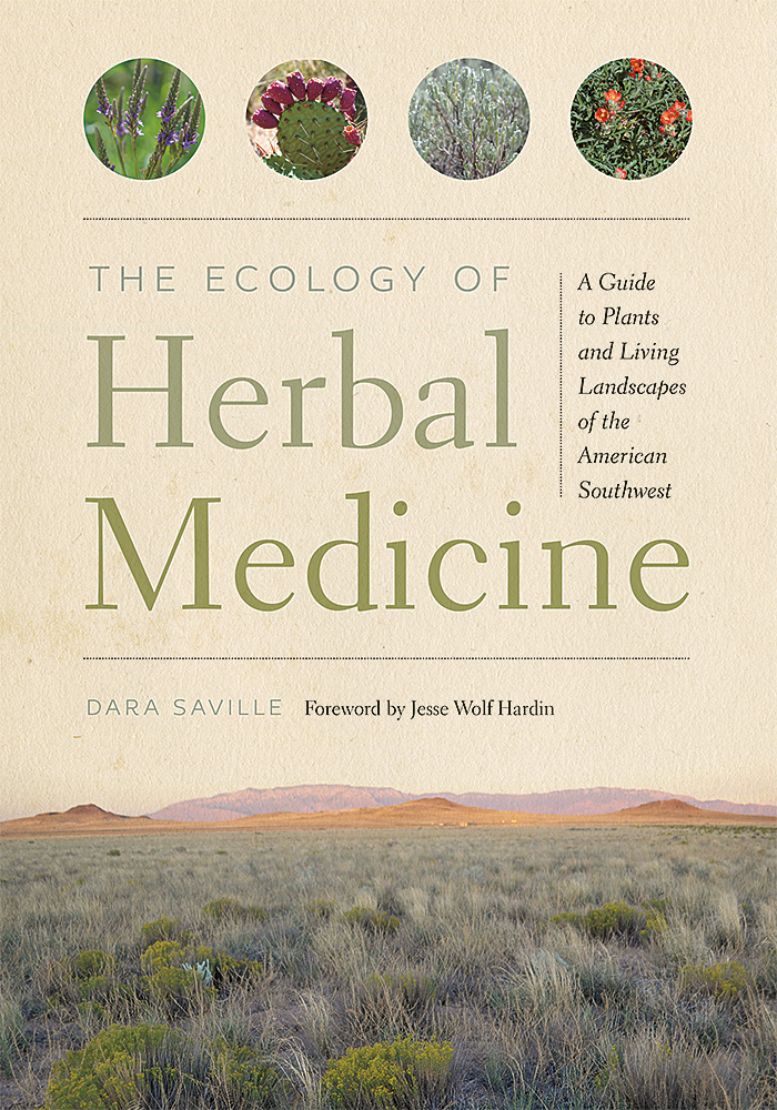 Book Cover of The Ecology of Herbal Medicine