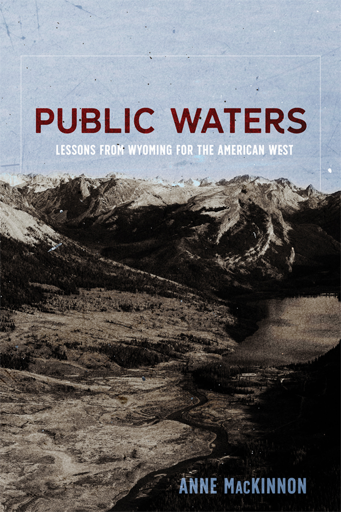 Book Cover of Public Waters
