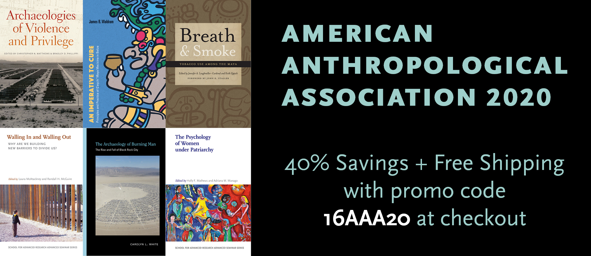 American Anthropological Association 2020 Banner